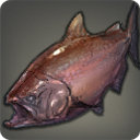Bronze Lake Trout - Fish - Items