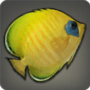 Coral Butterfly - Fish - Items