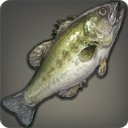 Dark Bass - Fish - Items