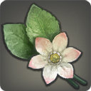 Pearl Roselle - Reagents - Items