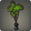 Potted Dragon Tree - Furnishings - Items