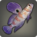 Striped Goby - Fish - Items