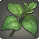 Bladeleaf - Reagents - Items